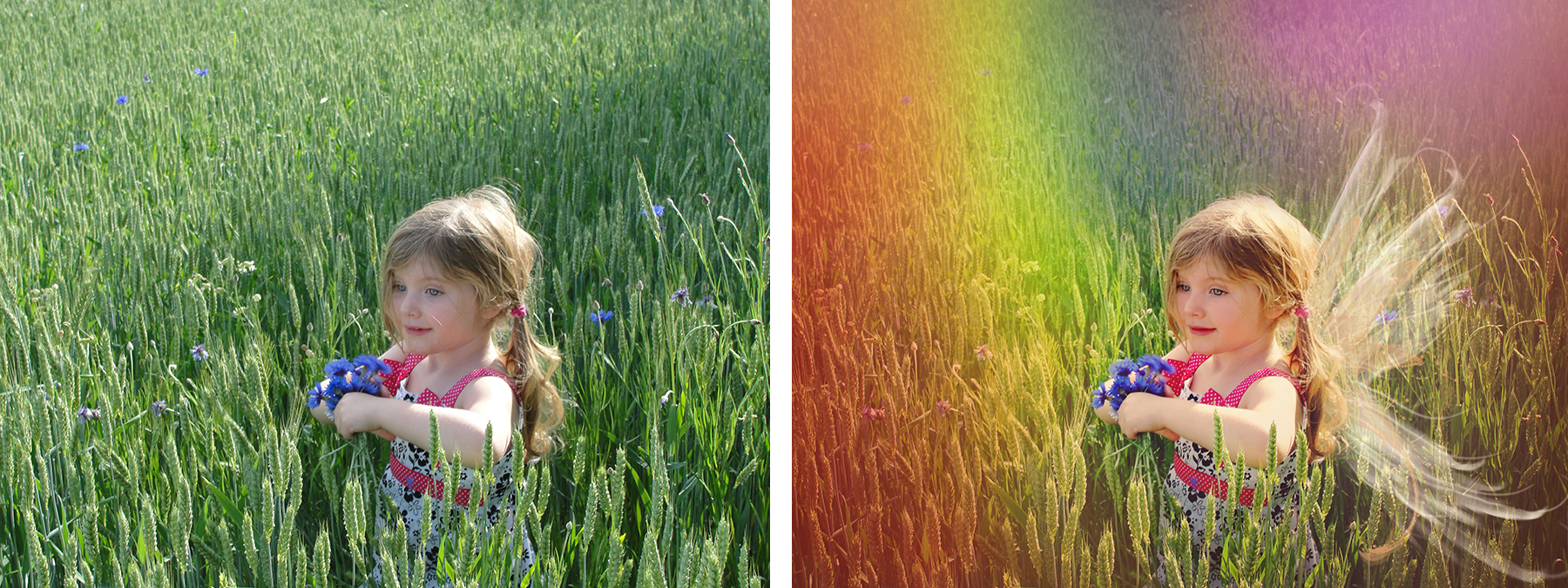 Girl with wings in rainbow field